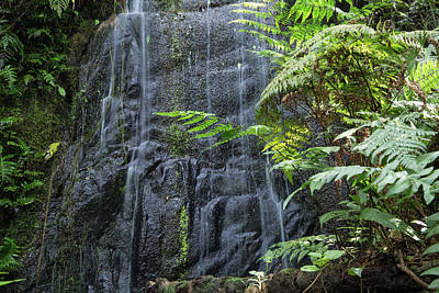 A Waterfall In The Mountain Jungles Poster