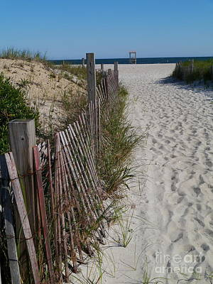A Wonderful Beachday On Cape Cod Poster by Christiane Schulze Art And Photography
