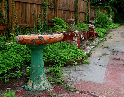 Abandoned Garden Poster