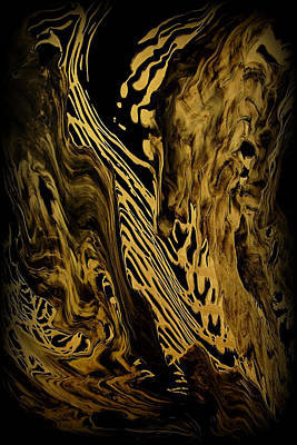 Abstract 149 Poster by J D Owen