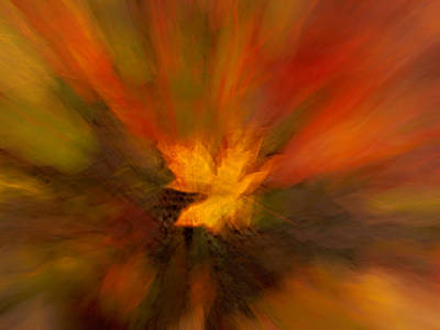 Abstract Autumn Leaf Poster by Mary Jo Allen