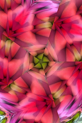 Abstract From Pink Rose Poster