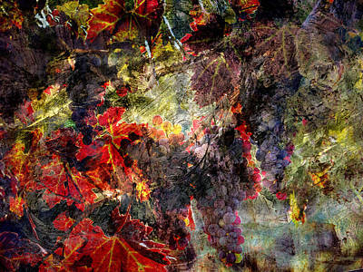 Poster featuring the photograph Abstract Grapes On Vine Number Two by Bob Coates