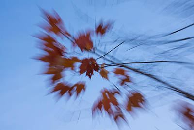 Abstract Impressions Of Fall - Autumn Wind Melody Poster by Georgia Mizuleva