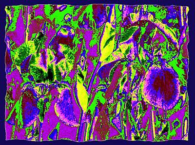 Abstract Irises Poster by Will Borden