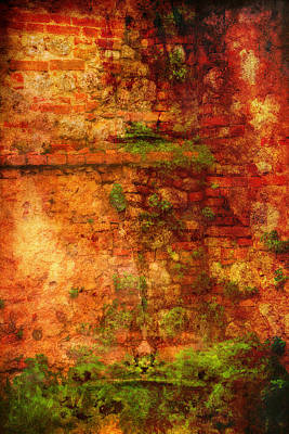 Poster featuring the photograph Abstract Vines On Wall - Radi Italy by Bob Coates