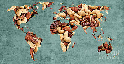 Abstract World Map - Mixed Nuts - Snack - Nut Hut Poster by Andee Design