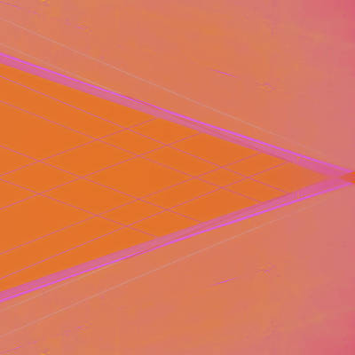 Abstraction In Pink Number 3 Poster by Carol Leigh
