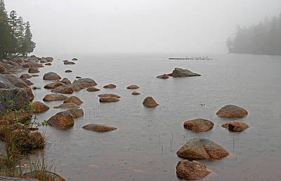 Acadia National Park Solitude Poster