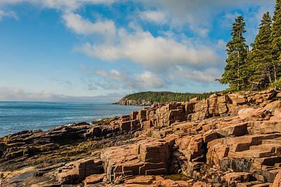 Acadia Shoreline Poster