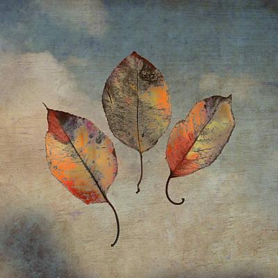 Acceptance Poster by Brenda Erickson