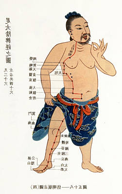 Acupuncture Chart Poster