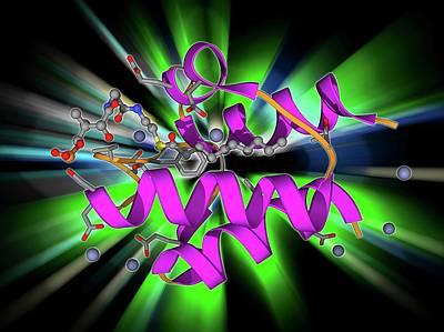 Acyl Carrier Protein Molecule Poster by Laguna Design
