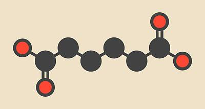 Adipic Acid Nylon Building Block Molecule Poster by Molekuul