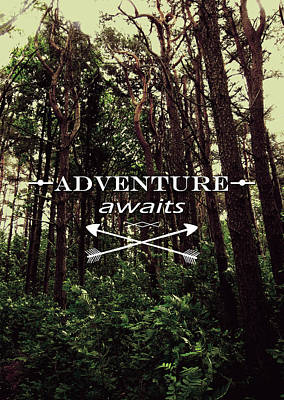 Adventure Awaits Poster by Nicklas Gustafsson
