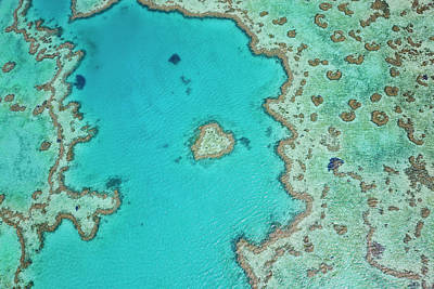 Aerial View Of Heart Reef, Part Poster