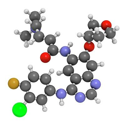 Afatinib Cancer Drug Molecule Poster by Molekuul
