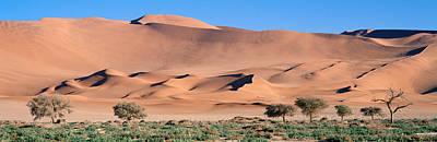 Africa, Namibia, Namib Desert Poster