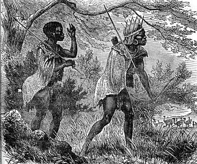 African Bushmen Poster