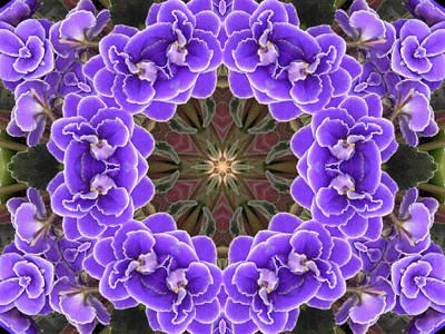 African Violet Mandala Poster