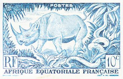 Afrique Rhino Poster
