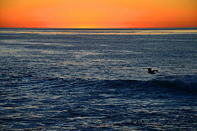 After The Sunset Glow In La Jolla Poster by Sharon Soberon