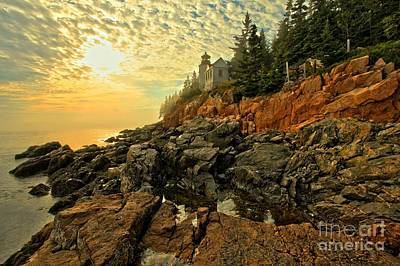 Afternoon At Bass Harbor Poster by Adam Jewell