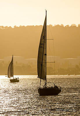 Afternoon Sails A2892 Poster