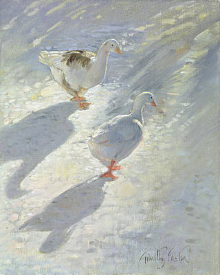 Against The Slope  Poster by Timothy Easton