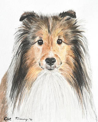 Agility Dog Sheltie In Pastel Poster