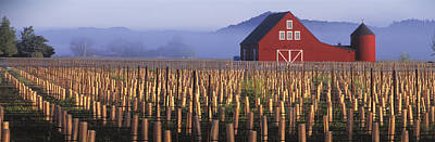 Agriculture - A New Red Barn Stands Poster by Randy Vaughn-Dotta