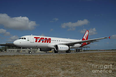 Airbus A320 From Tam Airlines Taken Poster by Riccardo Niccoli