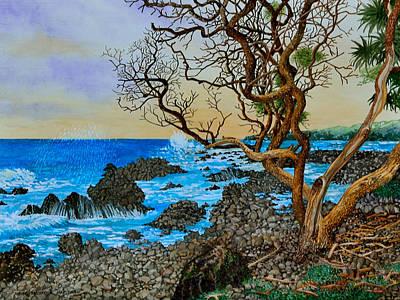 Akini Kinau Shoreline Maui Poster