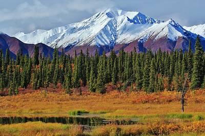 Alaska Range Peat Bog Vista Poster by David Broome