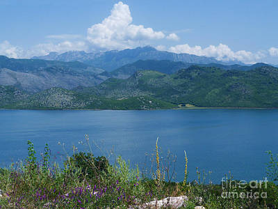 Albania From Lake Skadar Poster