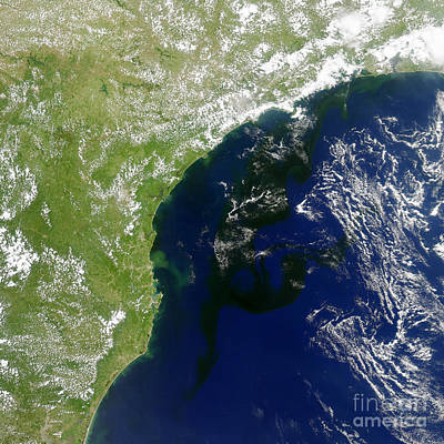 Algal Bloom Off Brazil Coast Poster by Science Source