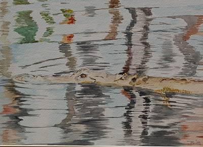 Ali The Alligator Poster