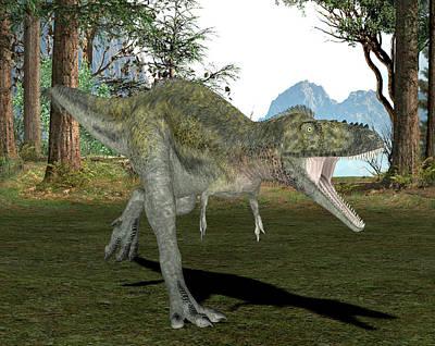 Alioramus Dinosaur Poster