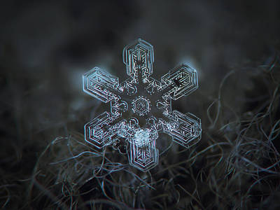 Snowflake Photo - Alioth Poster by Alexey Kljatov
