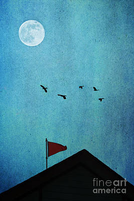 All Through The Night Poster by Trish Mistric
