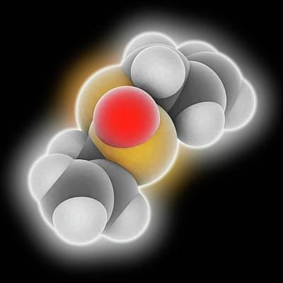 Allicin Molecule Poster by Laguna Design
