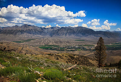 Alluvial Fan Poster by Robert Bales