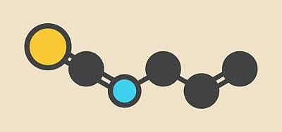 Allyl Isothiocyanate Mustard Molecule Poster by Molekuul
