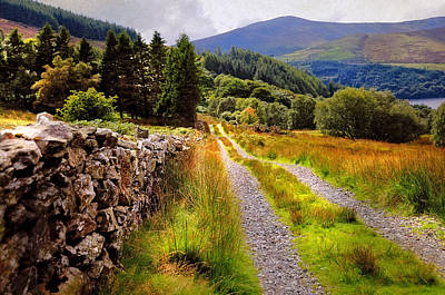 Along The Rural Road. Wicklow. Ireland Poster