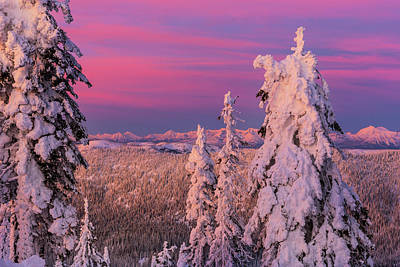 Alpenglow Light Over The Whitefish Poster by Chuck Haney