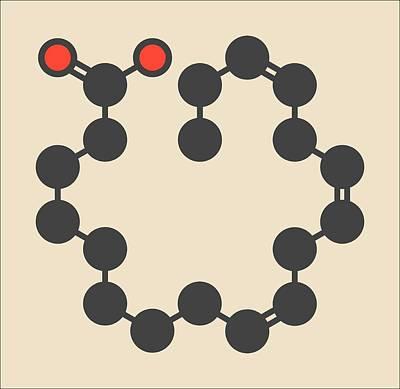 Alpha-linolenic Acid Molecule Poster by Molekuul