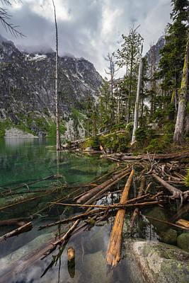 Alpine Lakes Logjam Poster by Mike Reid