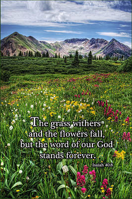 Poster featuring the photograph Alpine Meadow by Priscilla Burgers