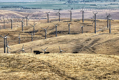 Altamont Pass - Coexistence Poster by Nikolyn McDonald