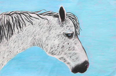 Poster featuring the painting Alvaro Stallion by Jeanne Fischer